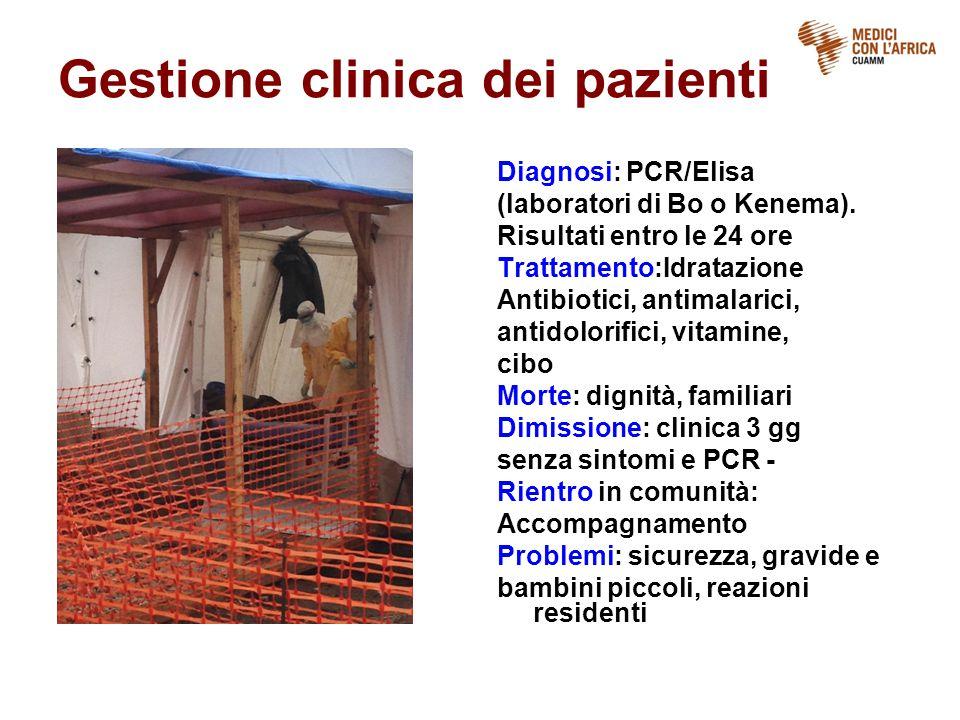 Gestione clinica dei pazienti Diagnosi: PCR/Elisa (laboratori di Bo o Kenema). Risultati entro le 24 ore Trattamento:Idratazione Antibiotici, antimala