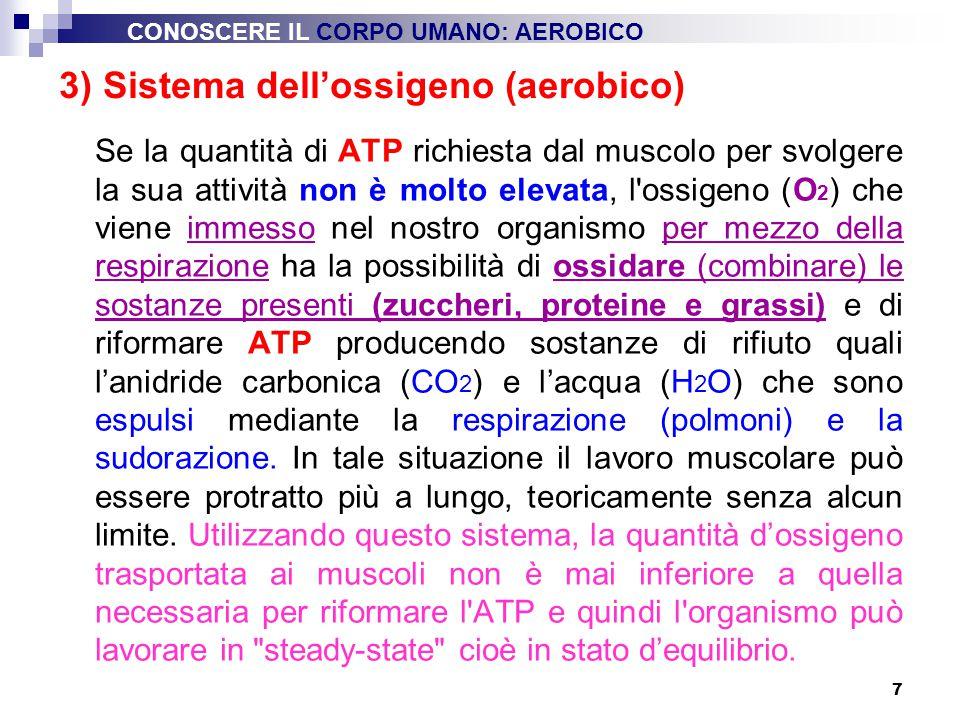 7 Se la quantità di ATP richiesta dal muscolo per svolgere la sua attività non è molto elevata, l'ossigeno (O 2 ) che viene immesso nel nostro organis
