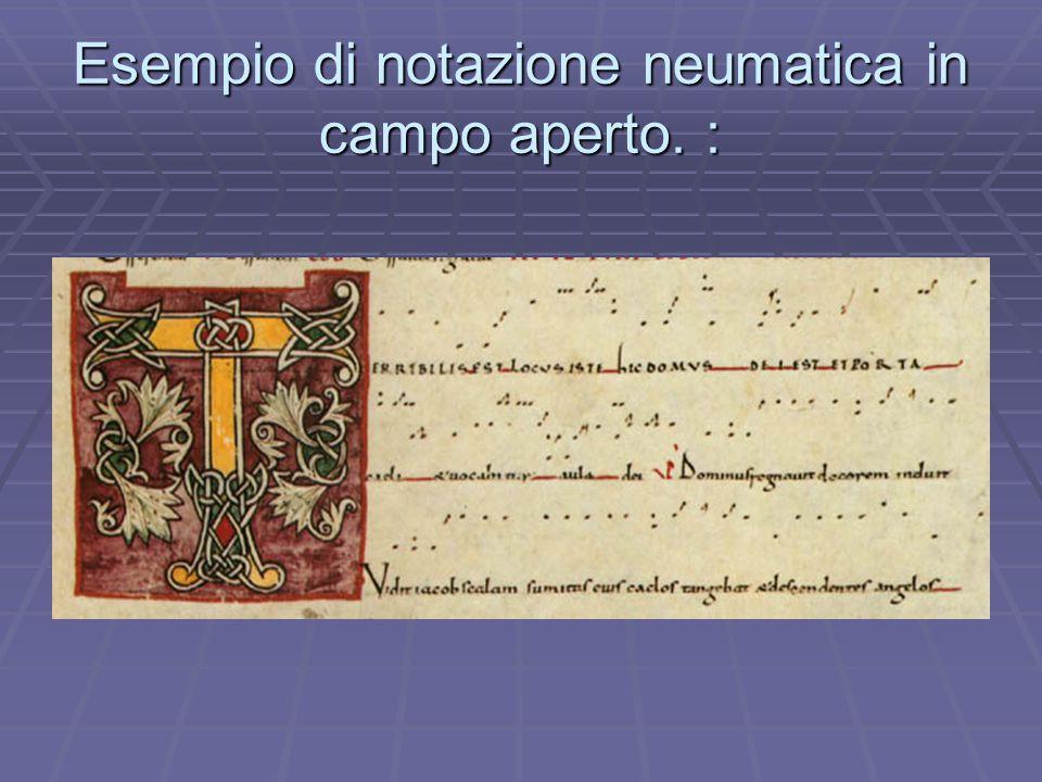  Tale notazione era usuale in Occidente in tutto il primo millennio cristiano.  Il presente esempio mostra un'antifona tratta dalla dedicazione di u