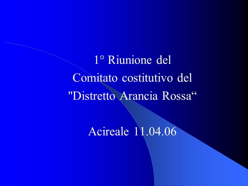 1° Riunione del Comitato costitutivo del Distretto Arancia Rossa Acireale 11.04.06