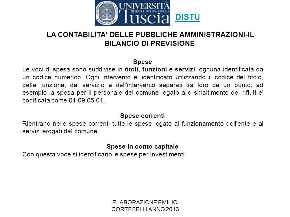 ELABORAZIONE EMILIO CORTESELLI ANNO 2013 Spese Le voci di spesa sono suddivise in titoli, funzioni e servizi, ognuna identificata da un codice numeric