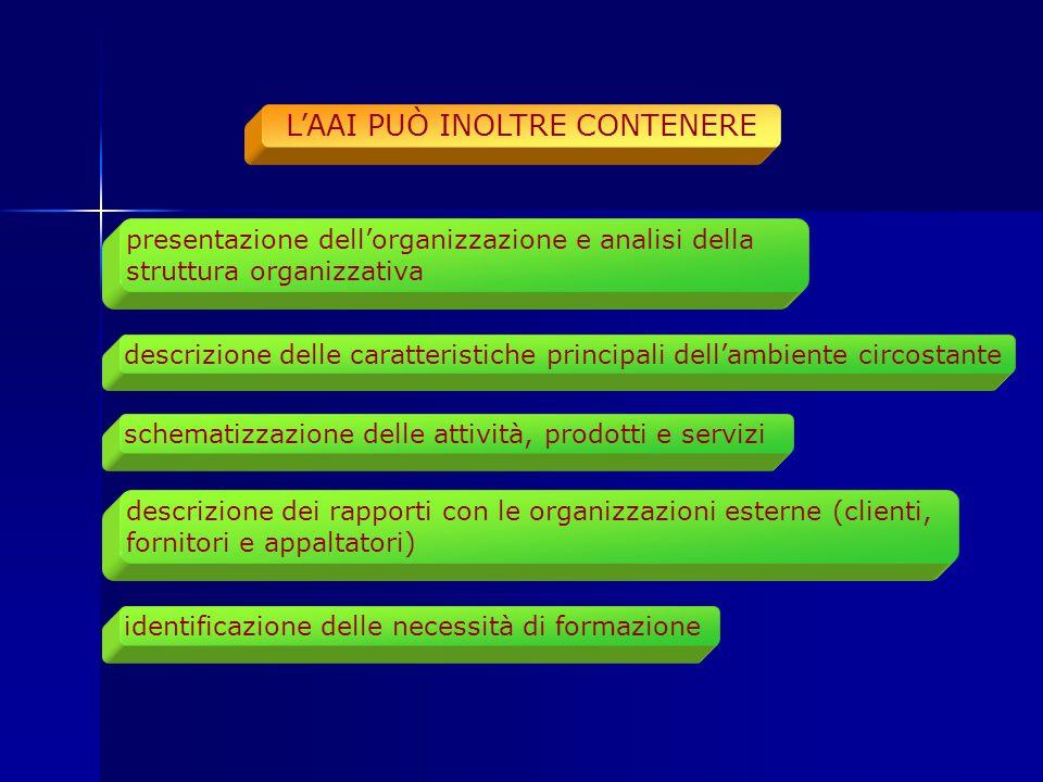 presentazione dell'organizzazione e analisi della struttura organizzativa descrizione delle caratteristiche principali dell'ambiente circostante schem
