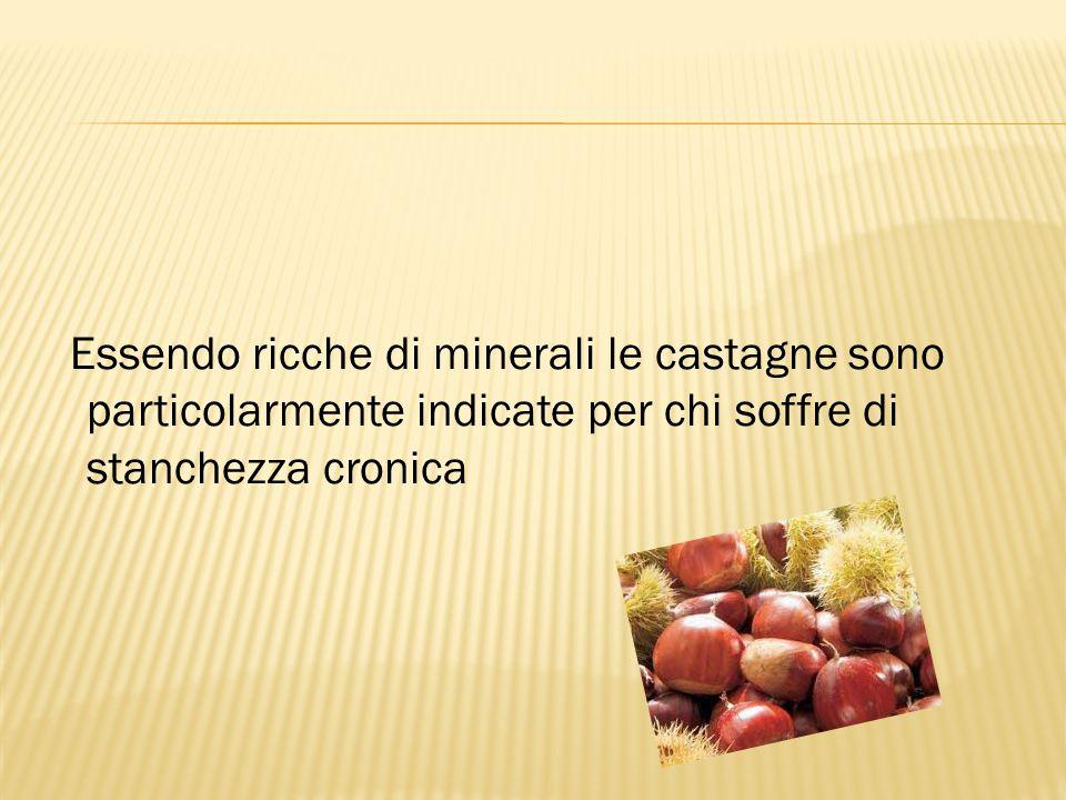 Essendo ricche di minerali le castagne sono particolarmente indicate per chi soffre di stanchezza cronica