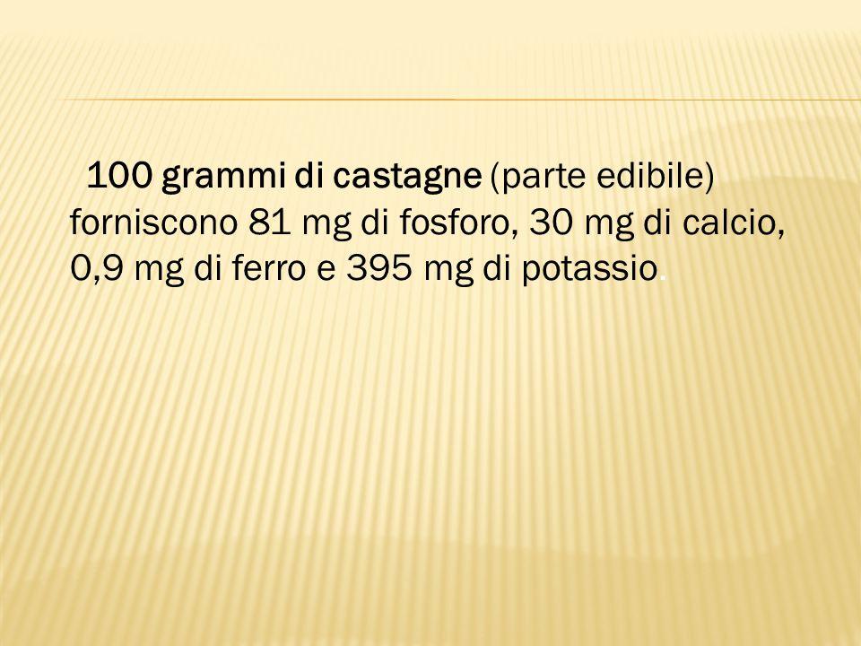 100 grammi di castagne (parte edibile) forniscono 81 mg di fosforo, 30 mg di calcio, 0,9 mg di ferro e 395 mg di potassio.
