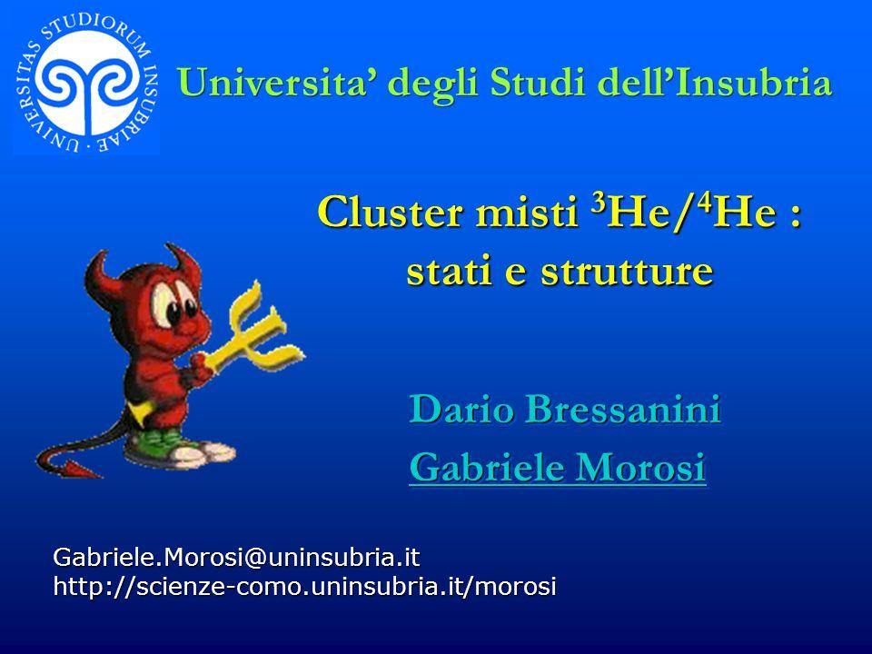 Cluster misti 3 He/ 4 He : stati e strutture Gabriele.Morosi@uninsubria.it http://scienze-como.uninsubria.it/morosi Dario Bressanini Gabriele Morosi D