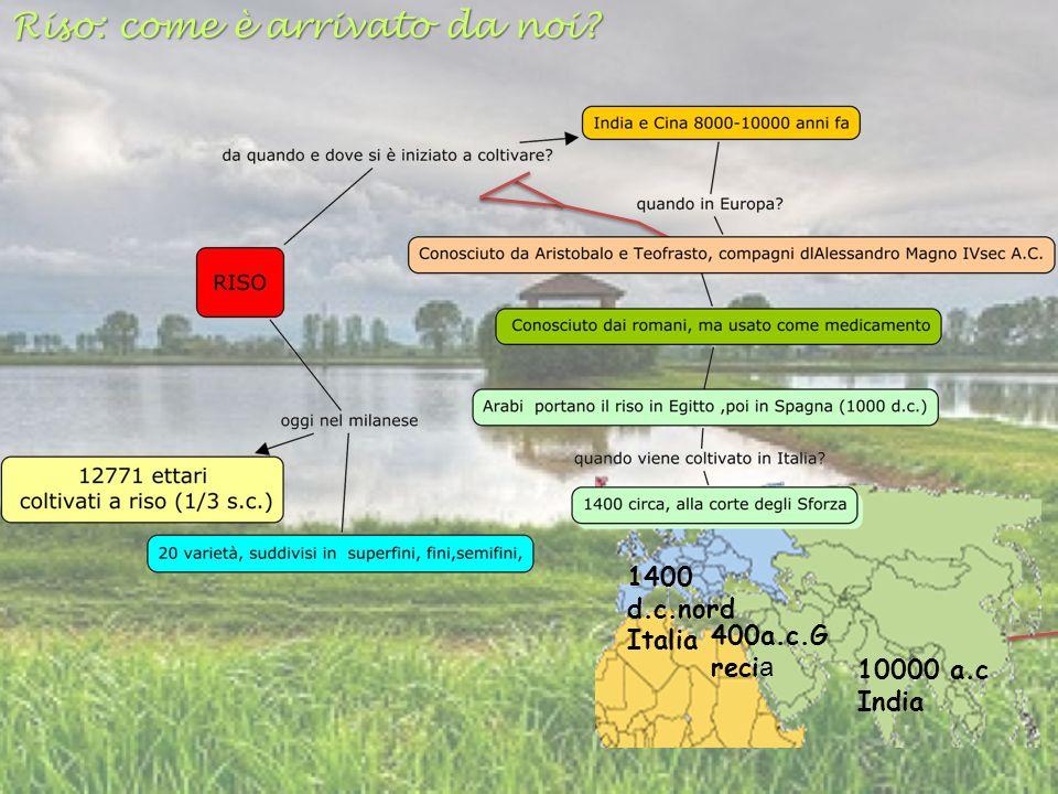 10000 a.c India 1400 d.c.nord Italia 400a.c.G recia Riso: come è arrivato da noi?