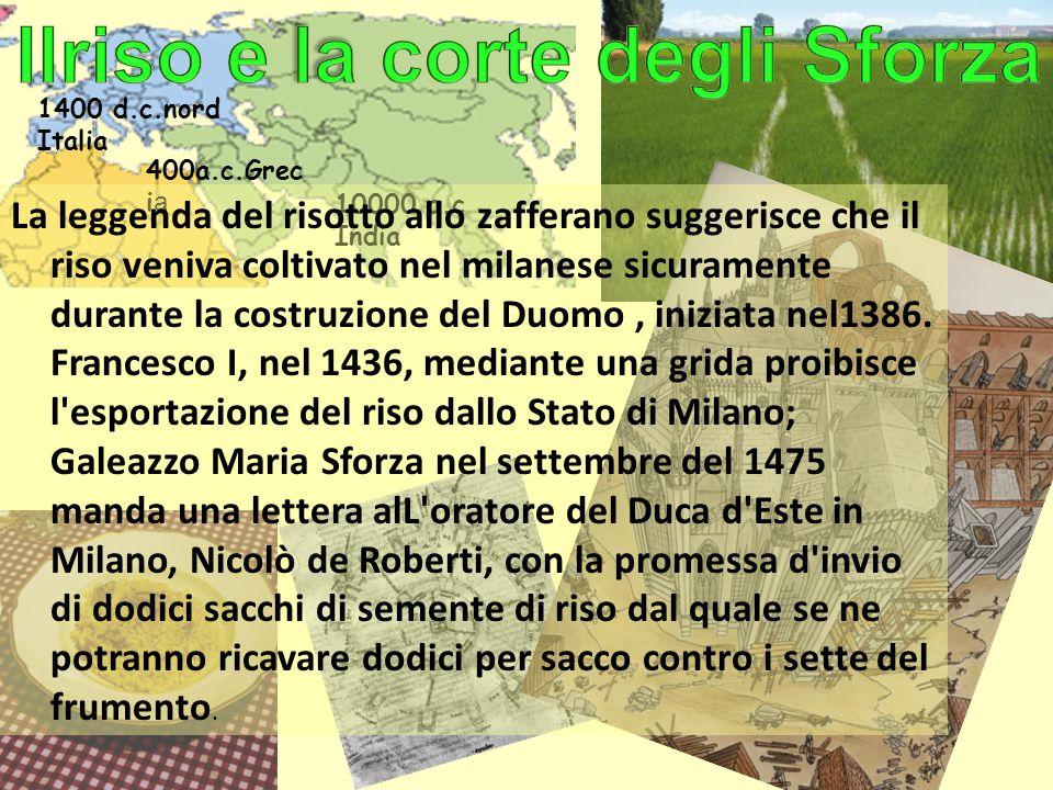 10000 a.c India 1400 d.c.nord Italia 400a.c.Grec ia La leggenda del risotto allo zafferano suggerisce che il riso veniva coltivato nel milanese sicura