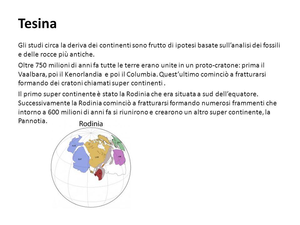 La Pannotia era situata nel polo sud.