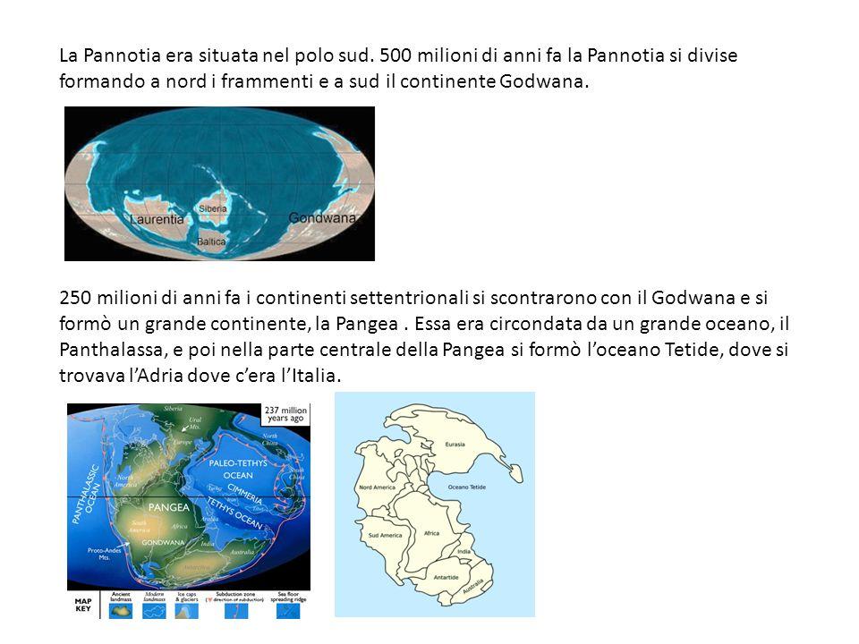 La Pannotia era situata nel polo sud. 500 milioni di anni fa la Pannotia si divise formando a nord i frammenti e a sud il continente Godwana. 250 mili