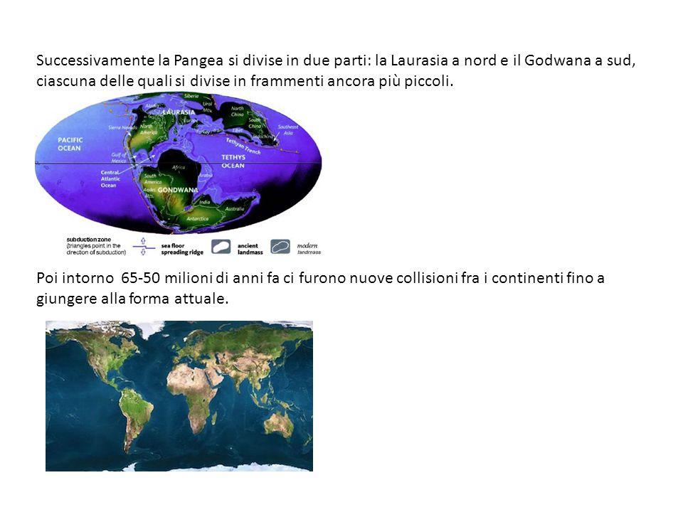 Successivamente la Pangea si divise in due parti: la Laurasia a nord e il Godwana a sud, ciascuna delle quali si divise in frammenti ancora più piccol