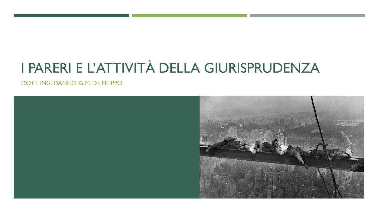 I PARERI E L'ATTIVITÀ DELLA GIURISPRUDENZA DOTT. ING. DANILO G.M. DE FILIPPO