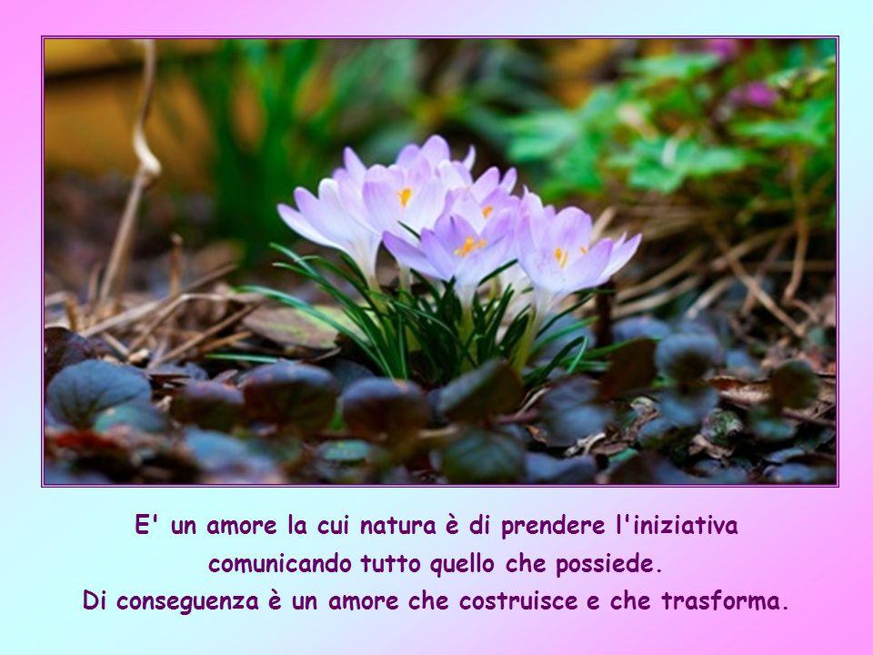 l amore del Padre celeste è del tutto disinteressato; si dona alle sue creature indipendentemente dalla risposta che può arrivare.