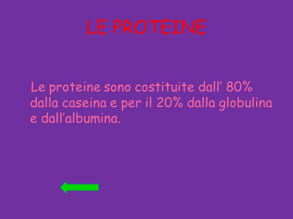 LE PROTEINE Le proteine sono costituite dall' 80% dalla caseina e per il 20% dalla globulina e dall'albumina.
