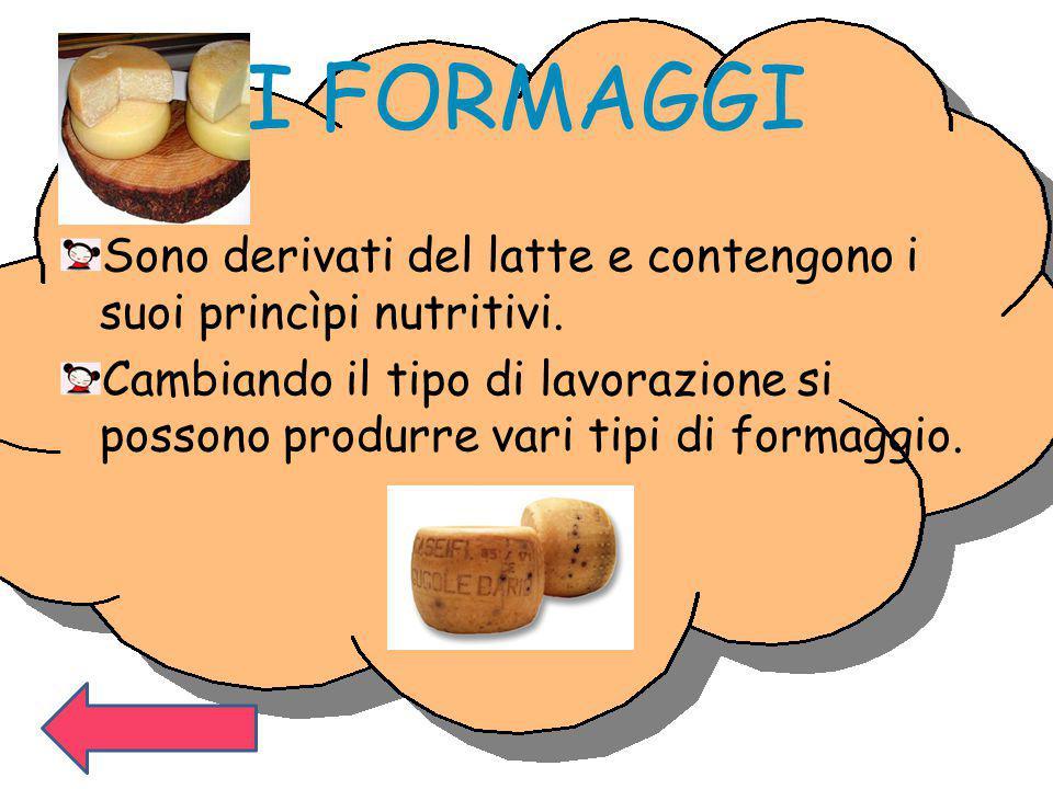 I FORMAGGI Sono derivati del latte e contengono i suoi princìpi nutritivi. Cambiando il tipo di lavorazione si possono produrre vari tipi di formaggio