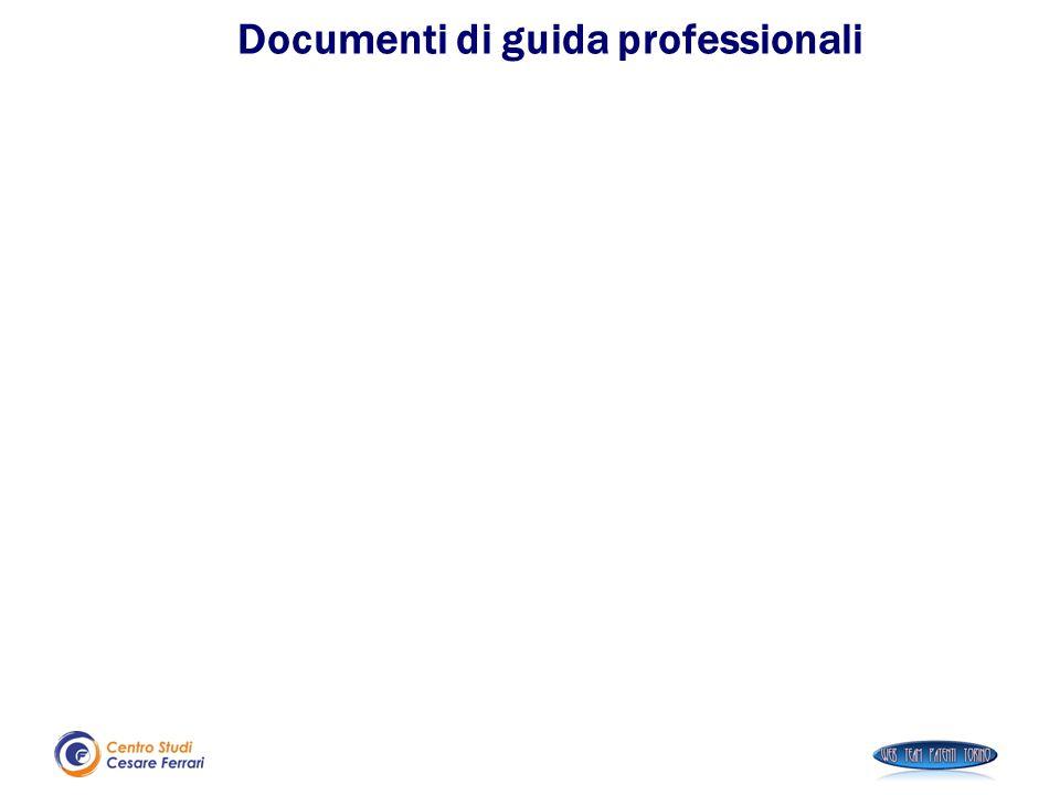 Documenti di guida professionali