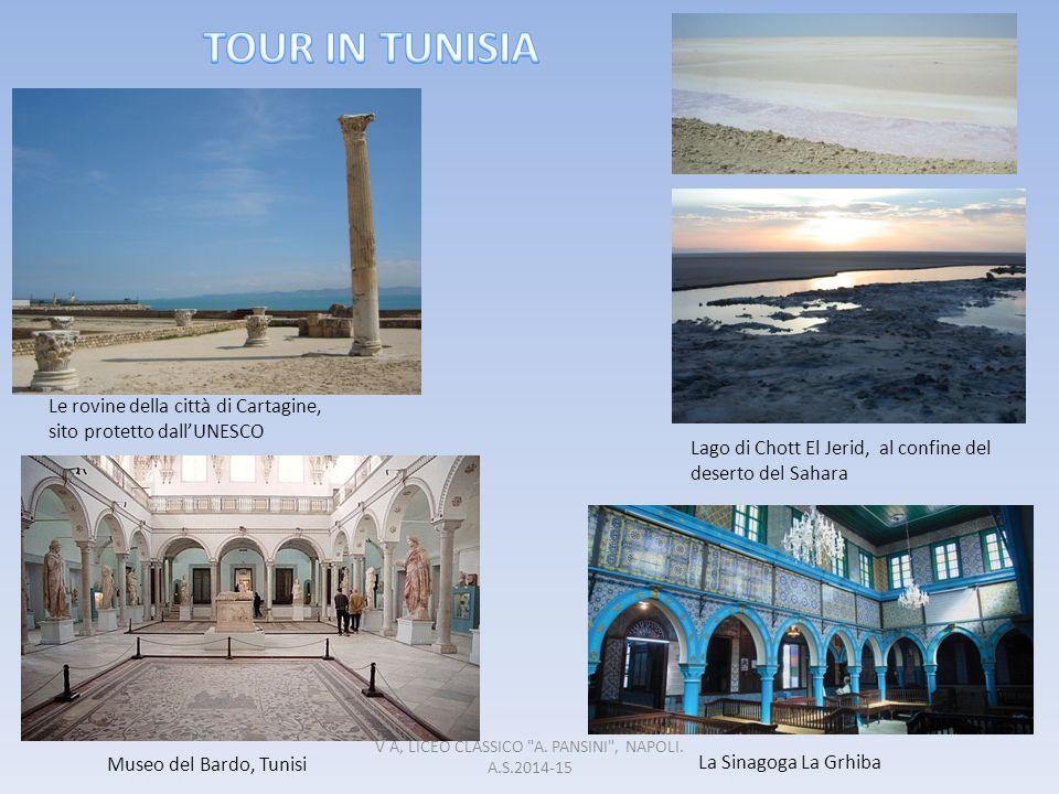 Le rovine della città di Cartagine, sito protetto dall'UNESCO La Sinagoga La Grhiba Lago di Chott El Jerid, al confine del deserto del Sahara Museo de
