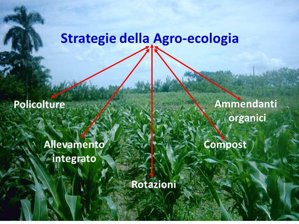 Strategie della Agro-ecologia Allevamento integrato Compost Ammendanti organici Rotazioni Policolture