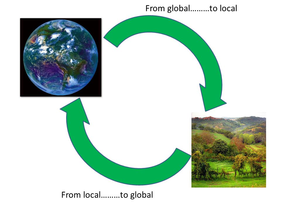From global………to local From local………to global