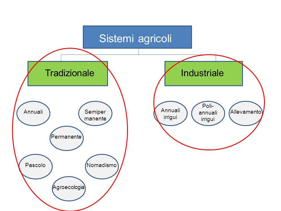 Sistemi agricoli IndustrialeTradizionale Annuali irrigui Poli- annuali irrigui AllevamentoAnnualiSemiper manente Permanente PascoloNomadismo Agroecolo