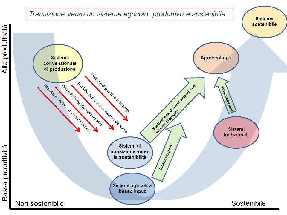 Pratiche di gestione migliorate Pratiche per la conservazione del suolo Controllo integrato delle malattieRiduzione dell'uso di prodotti chimici Siste