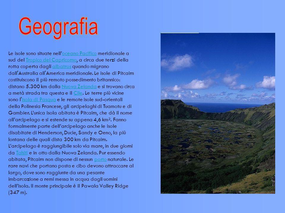 Quando l equipaggio del Bounty vi giunse insieme ai Polinesiani, Pitcairn era quasi interamente ricoperta da una foresta, che è stata ormai ampiamente sostituita da alberi da frutto e giardini.