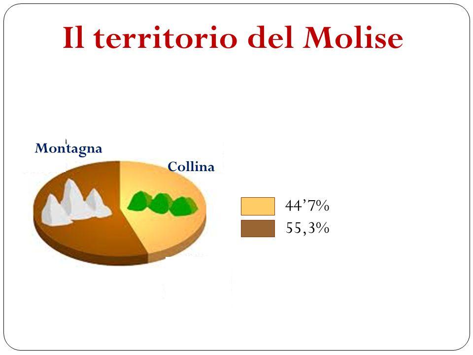 44'7% 55,3% Montagna Collina Il territorio del Molise