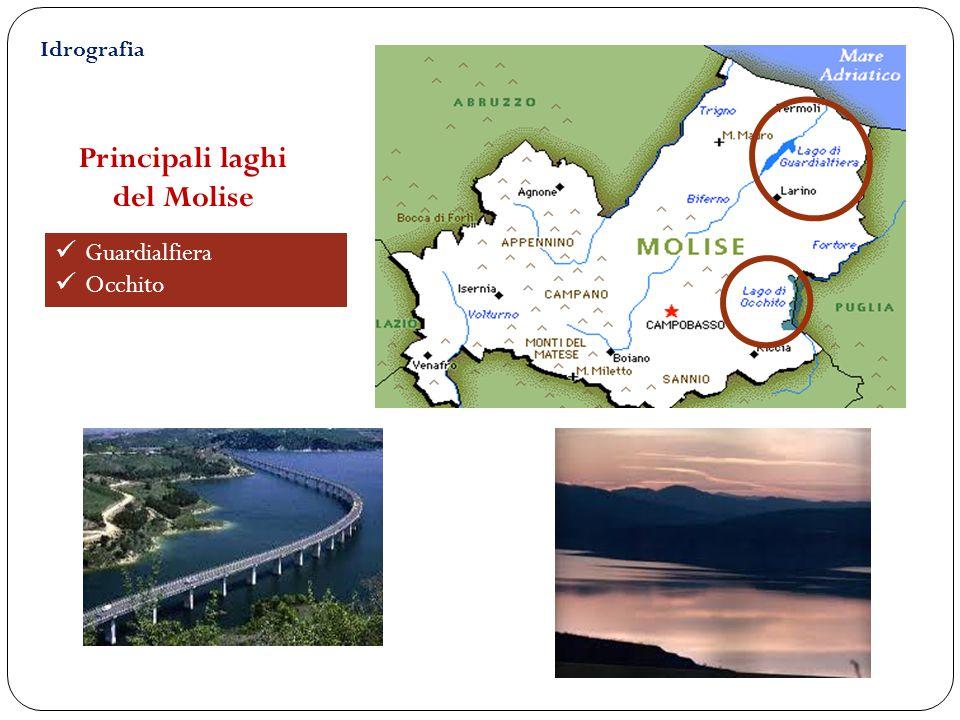 Principali laghi del Molise Guardialfiera Occhito Idrografia