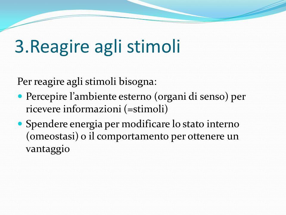 3.Reagire agli stimoli Per reagire agli stimoli bisogna: Percepire l'ambiente esterno (organi di senso) per ricevere informazioni (=stimoli) Spendere