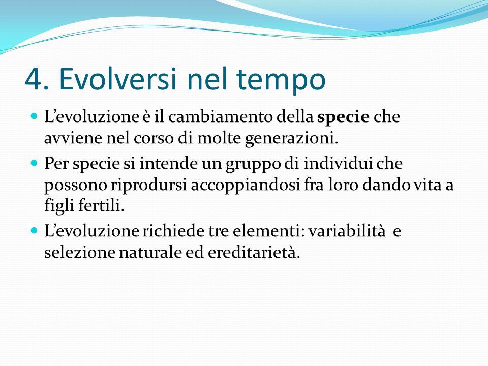 4. Evolversi nel tempo L'evoluzione è il cambiamento della specie che avviene nel corso di molte generazioni. Per specie si intende un gruppo di indiv
