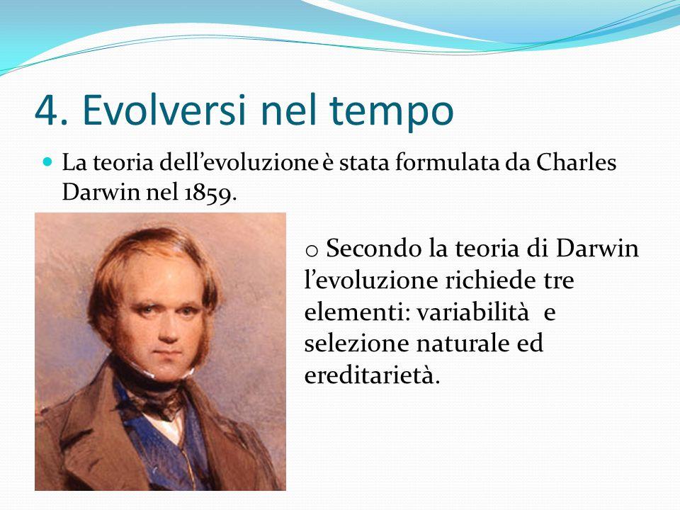 4. Evolversi nel tempo La teoria dell'evoluzione è stata formulata da Charles Darwin nel 1859. ereditarietà. o Secondo la teoria di Darwin l'evoluzion