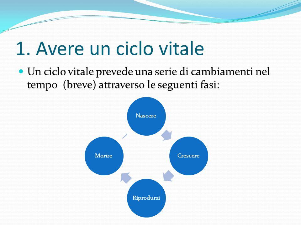 1. Avere un ciclo vitale Un ciclo vitale prevede una serie di cambiamenti nel tempo (breve) attraverso le seguenti fasi: NascereCrescere Riprodursi Mo