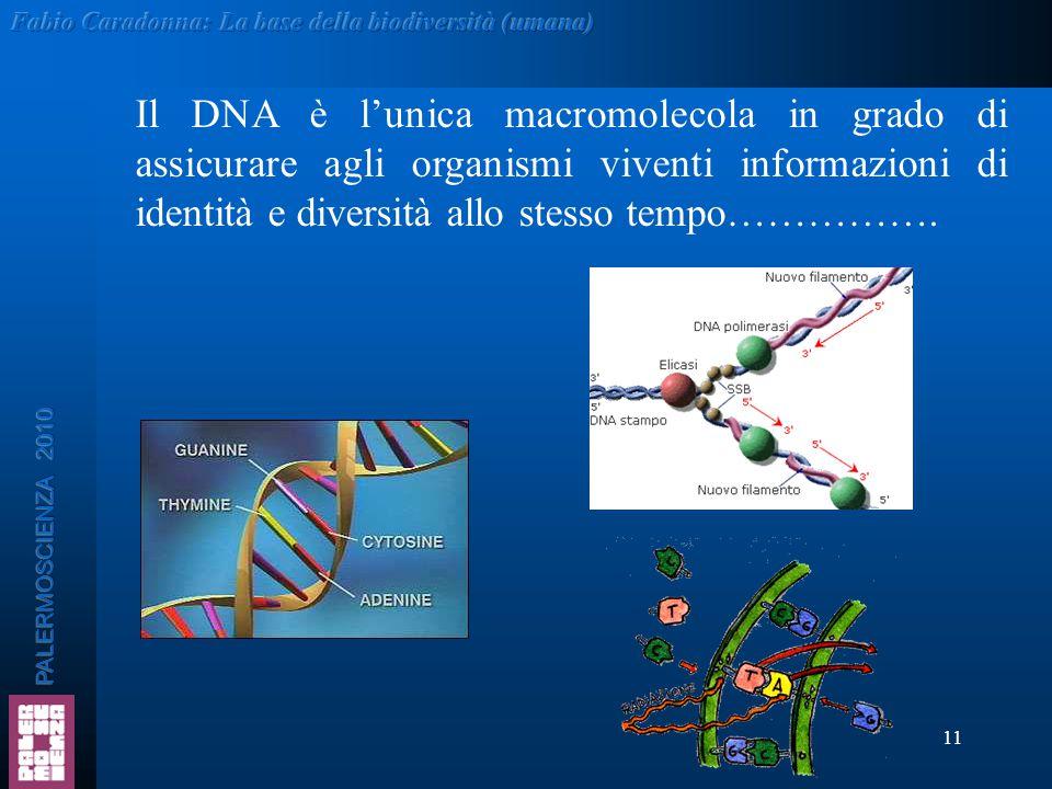 11 Il DNA è l'unica macromolecola in grado di assicurare agli organismi viventi informazioni di identità e diversità allo stesso tempo…………….