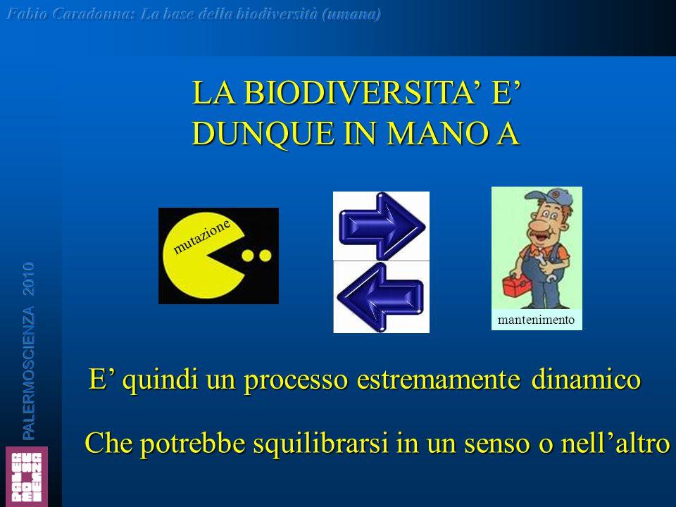 LA BIODIVERSITA' E' DUNQUE IN MANO A E' quindi un processo estremamente dinamico Che potrebbe squilibrarsi in un senso o nell'altro mutazione mantenim