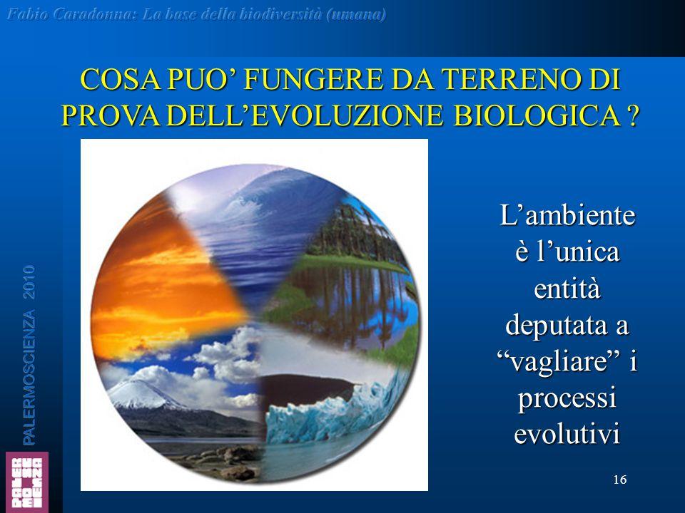 """16 COSA PUO' FUNGERE DA TERRENO DI PROVA DELL'EVOLUZIONE BIOLOGICA ? L'ambiente è l'unica entità deputata a """"vagliare"""" i processi evolutivi"""