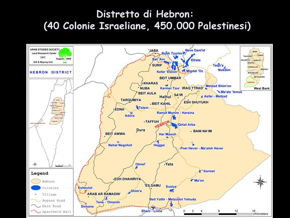 Distretto di Hebron: (40 Colonie Israeliane, 450.000 Palestinesi) 