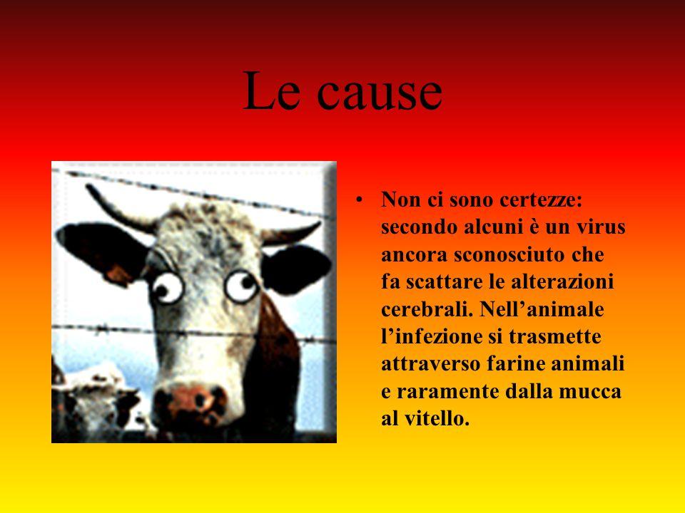 La diffusione CAMBIAMENTI DI RESIDENZA: la variante della malattia di Creutzfeldt-Jacob è la versione umana della Bse del bovino. Si trasmetterebbe al