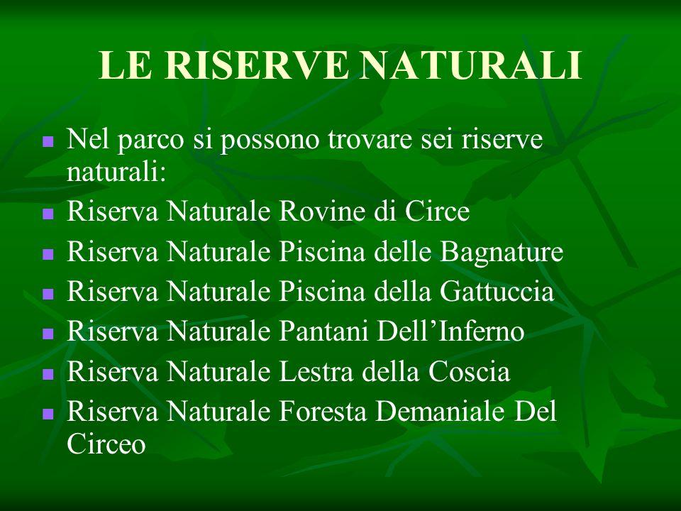 LE RISERVE NATURALI Nel parco si possono trovare sei riserve naturali: Riserva Naturale Rovine di Circe Riserva Naturale Piscina delle Bagnature Riser
