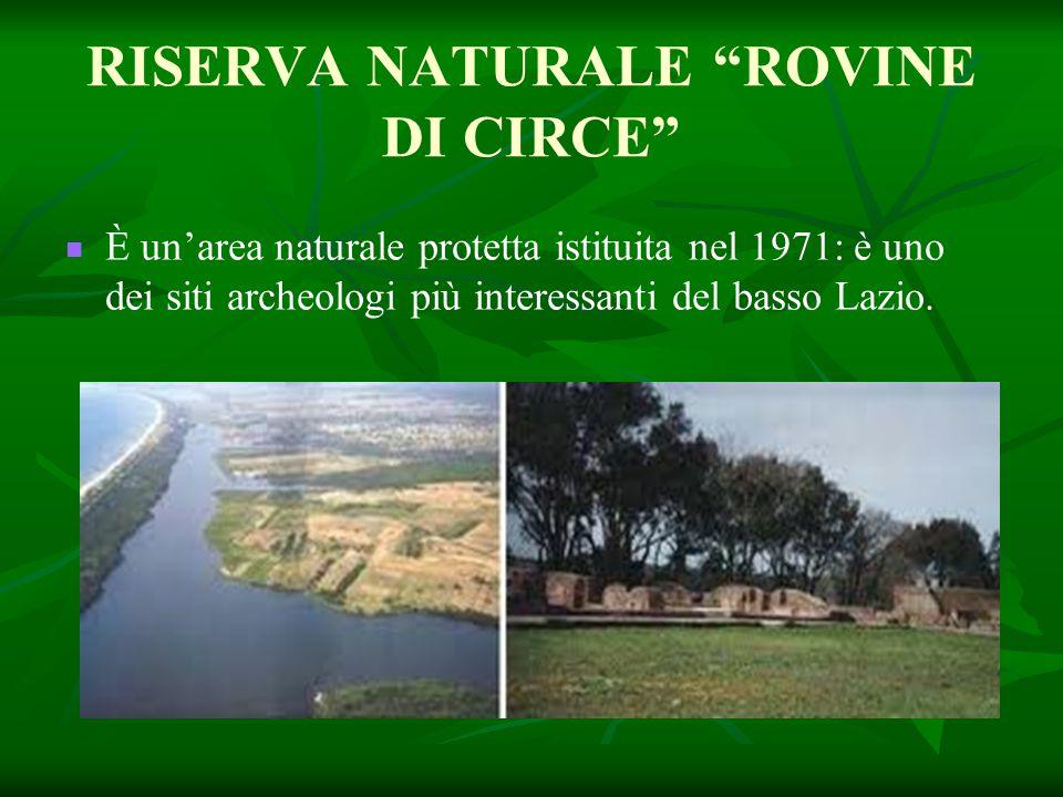 """RISERVA NATURALE """"ROVINE DI CIRCE"""" È un'area naturale protetta istituita nel 1971: è uno dei siti archeologi più interessanti del basso Lazio."""