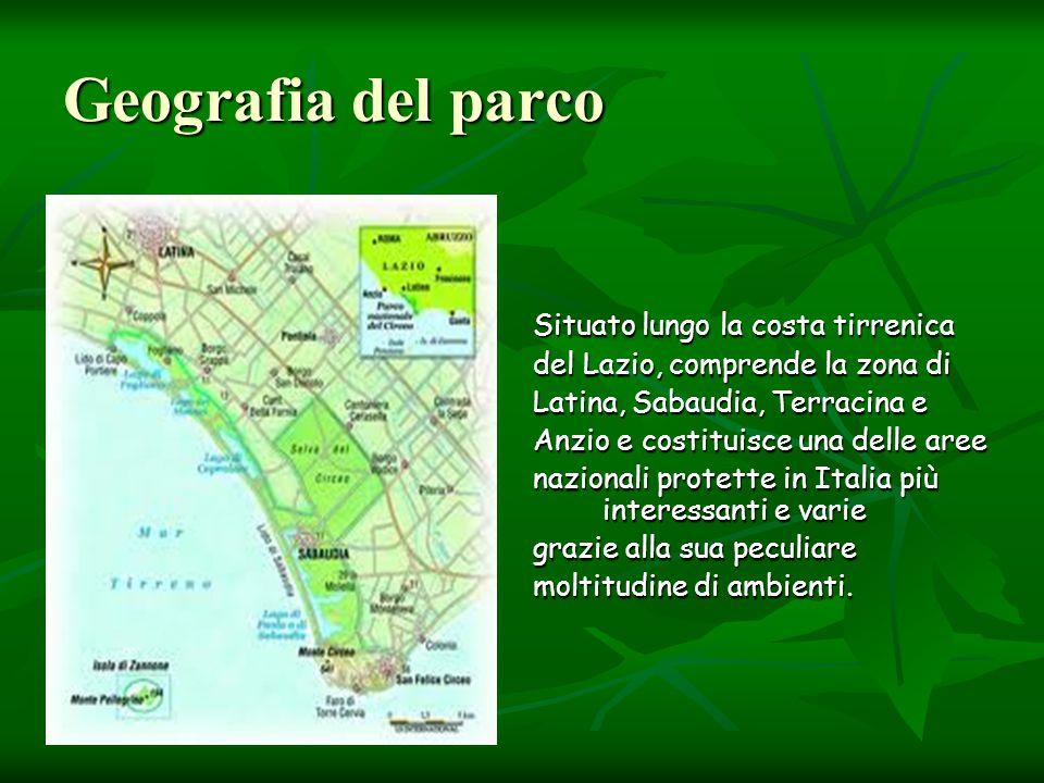 Geografia del parco Situato lungo la costa tirrenica del Lazio, comprende la zona di Latina, Sabaudia, Terracina e Anzio e costituisce una delle aree