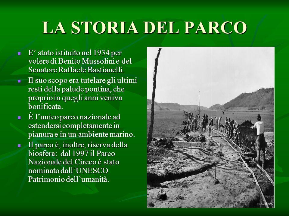 LA STORIA DEL PARCO E' stato istituito nel 1934 per volere di Benito Mussolini e del Senatore Raffaele Bastianelli. E' stato istituito nel 1934 per vo