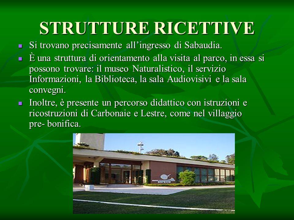 STRUTTURE RICETTIVE Si trovano precisamente all'ingresso di Sabaudia. Si trovano precisamente all'ingresso di Sabaudia. È una struttura di orientament