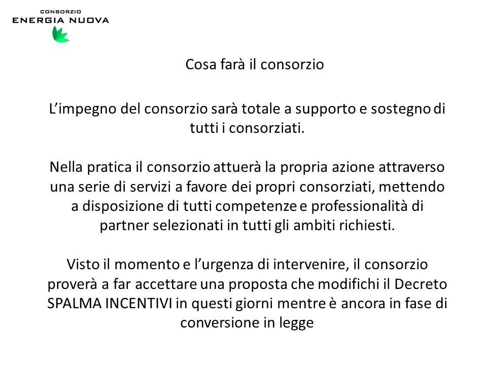 Cosa farà il consorzio L'impegno del consorzio sarà totale a supporto e sostegno di tutti i consorziati. Nella pratica il consorzio attuerà la propria