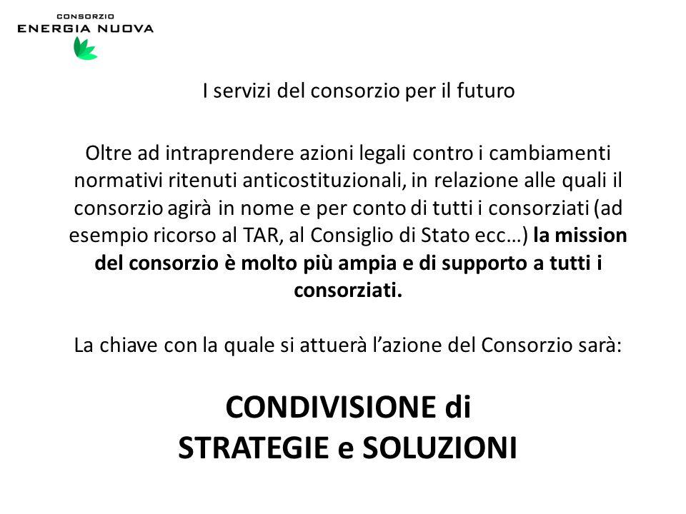 I servizi del consorzio per il futuro Oltre ad intraprendere azioni legali contro i cambiamenti normativi ritenuti anticostituzionali, in relazione al