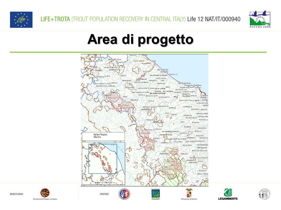 Area di progetto 11