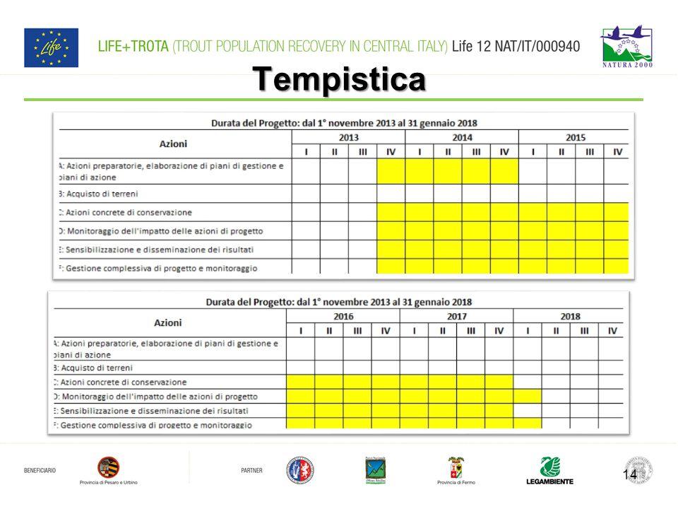 Tempistica 14
