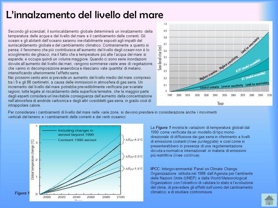 L'innalzamento del livello del mare Secondo gli scienziati, il surriscaldamento globale determinerà un innalzamento della temperatura delle acque e de