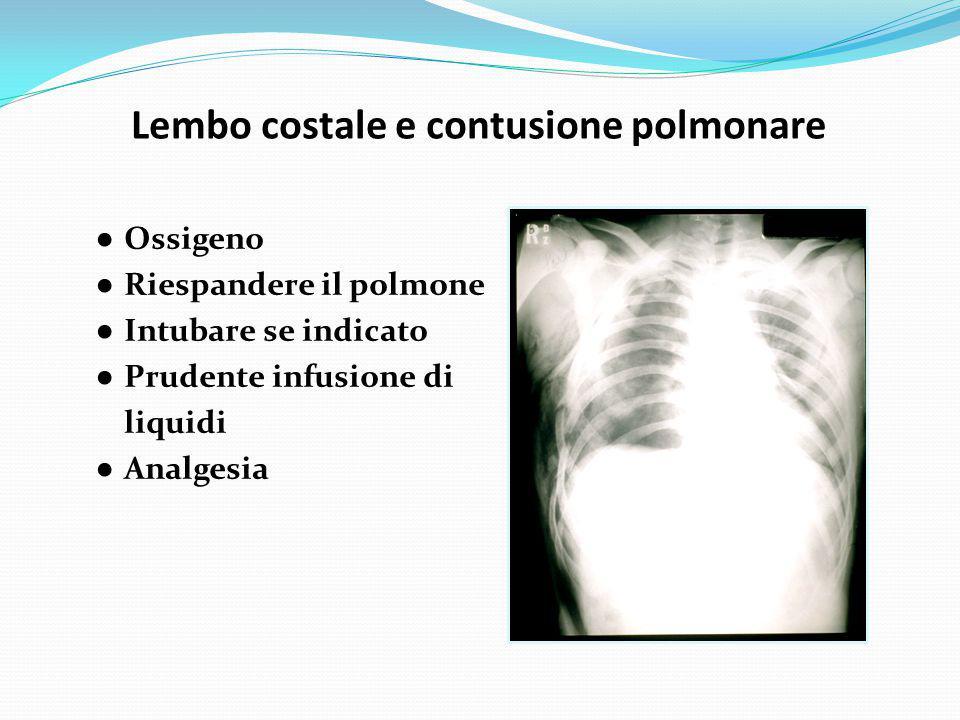 ● Ossigeno ● Riespandere il polmone ● Intubare se indicato ● Prudente infusione di liquidi ● Analgesia