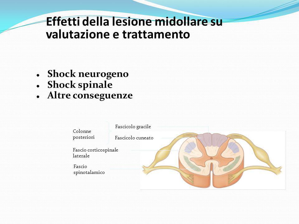Effetti della lesione midollare su valutazione e trattamento ● Shock neurogeno ● Shock spinale ● Altre conseguenze Fascicolo cuneato Colonne posterior