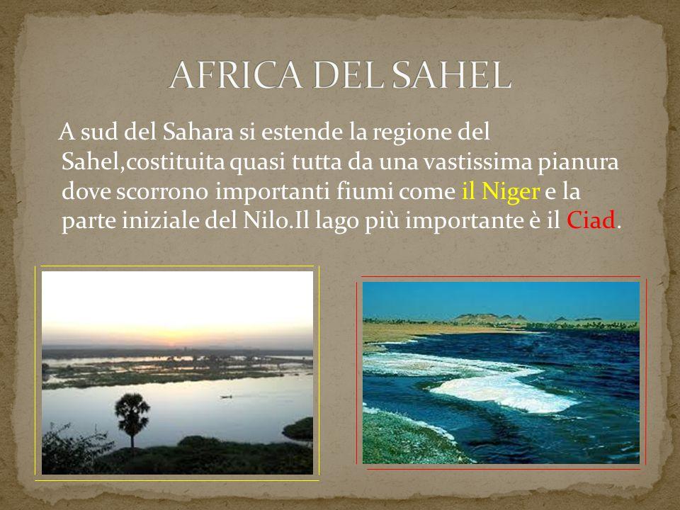 A sud del Sahara si estende la regione del Sahel,costituita quasi tutta da una vastissima pianura dove scorrono importanti fiumi come il Niger e la pa