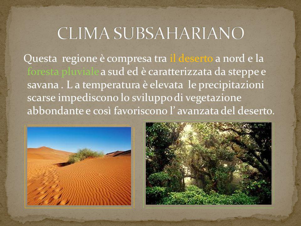 Questa regione è compresa tra il deserto a nord e la foresta pluviale a sud ed è caratterizzata da steppe e savana. L a temperatura è elevata le preci